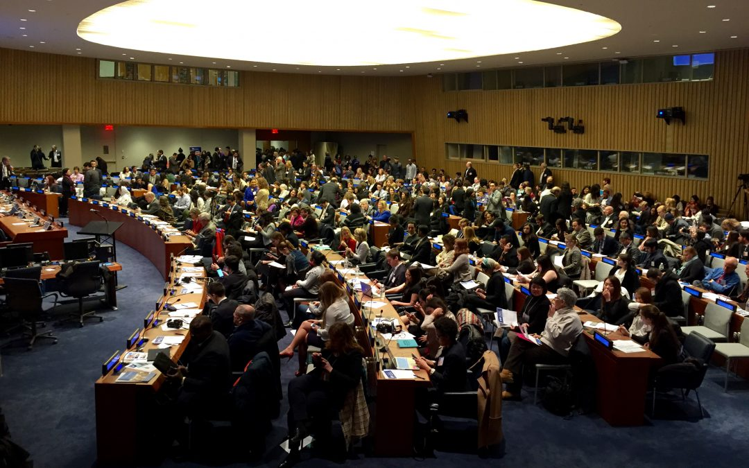 United Nations Association of the United States Members' Day Meeting