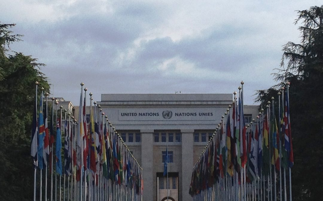 UN ILC Debates Crimes Against Humanity
