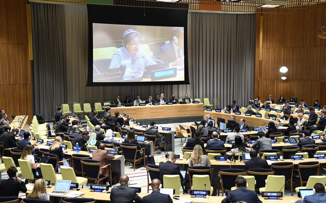 Sixth Committee Considers ILC Draft Articles on Crimes Against Humanity Convention on First Reading